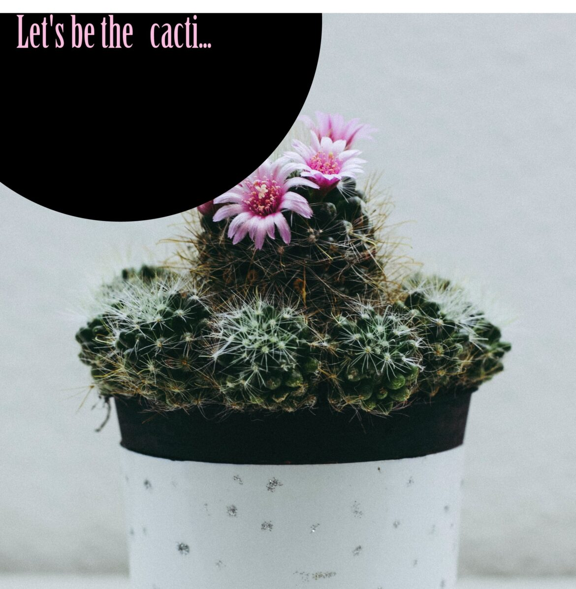 Let's be the cacti… – Short Motivational Story by Bobby George